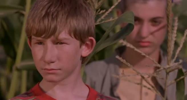 LES ENFANTS DU MAÏS 5 : LA SECTE DES DAMNÉS (Children of the Corn 5: Fields of Terror) de Ethan Wiley (1998)