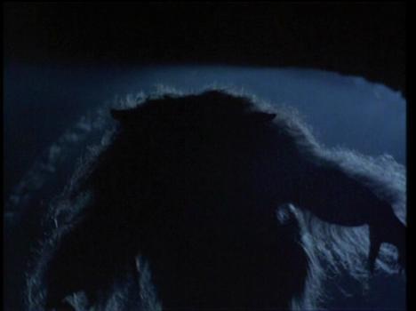 HURLEMENTS 5: LA RENAISSANCE (Howling V: The Rebirth) de Neil Sundstorm (1989)