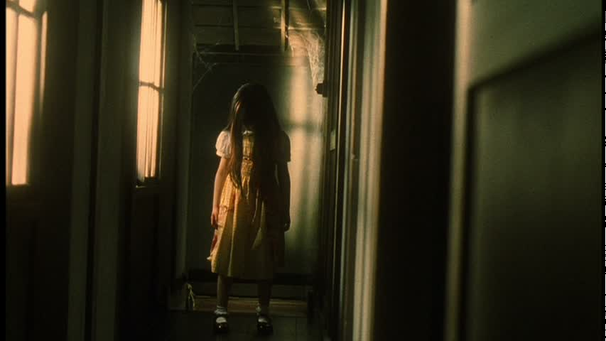 REINCARNATION (輪廻) de Shimizu Takashi (2005)