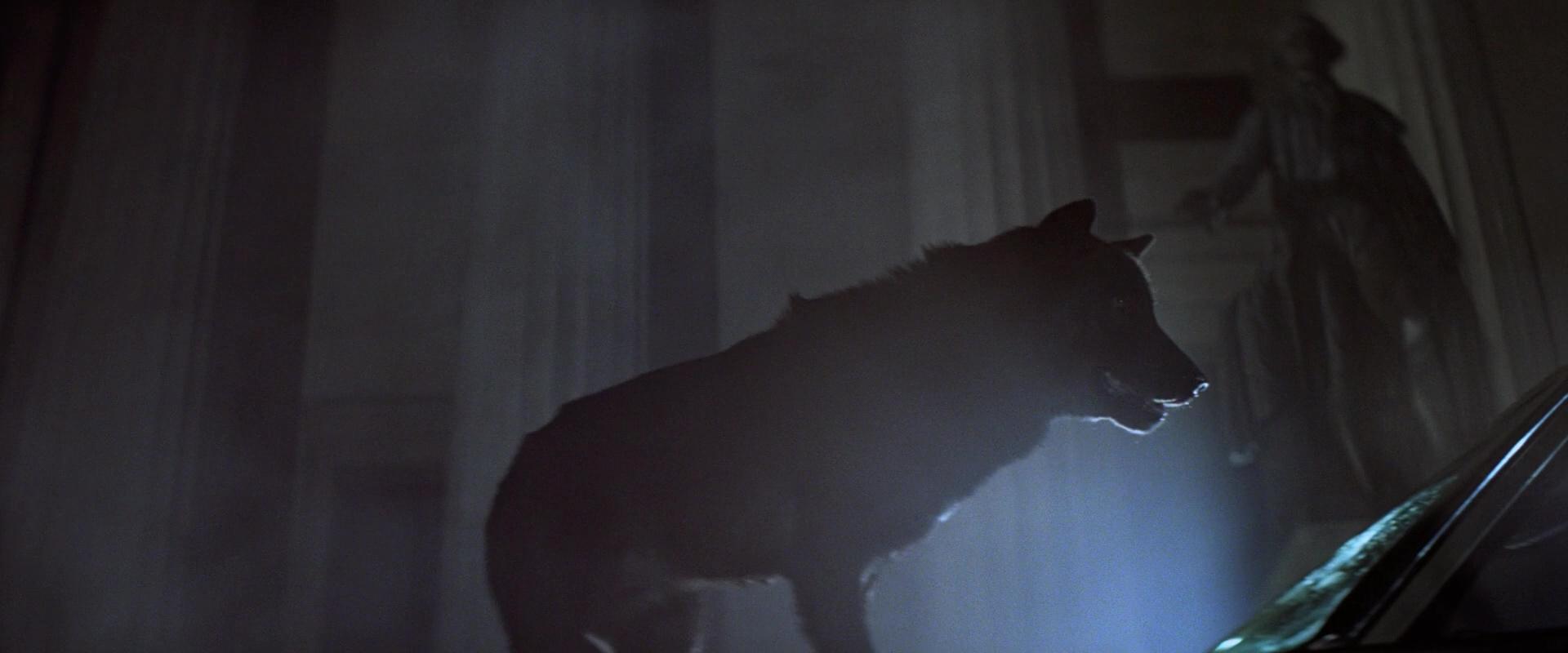 WOLFEN de Michael Wadleigh (1981)