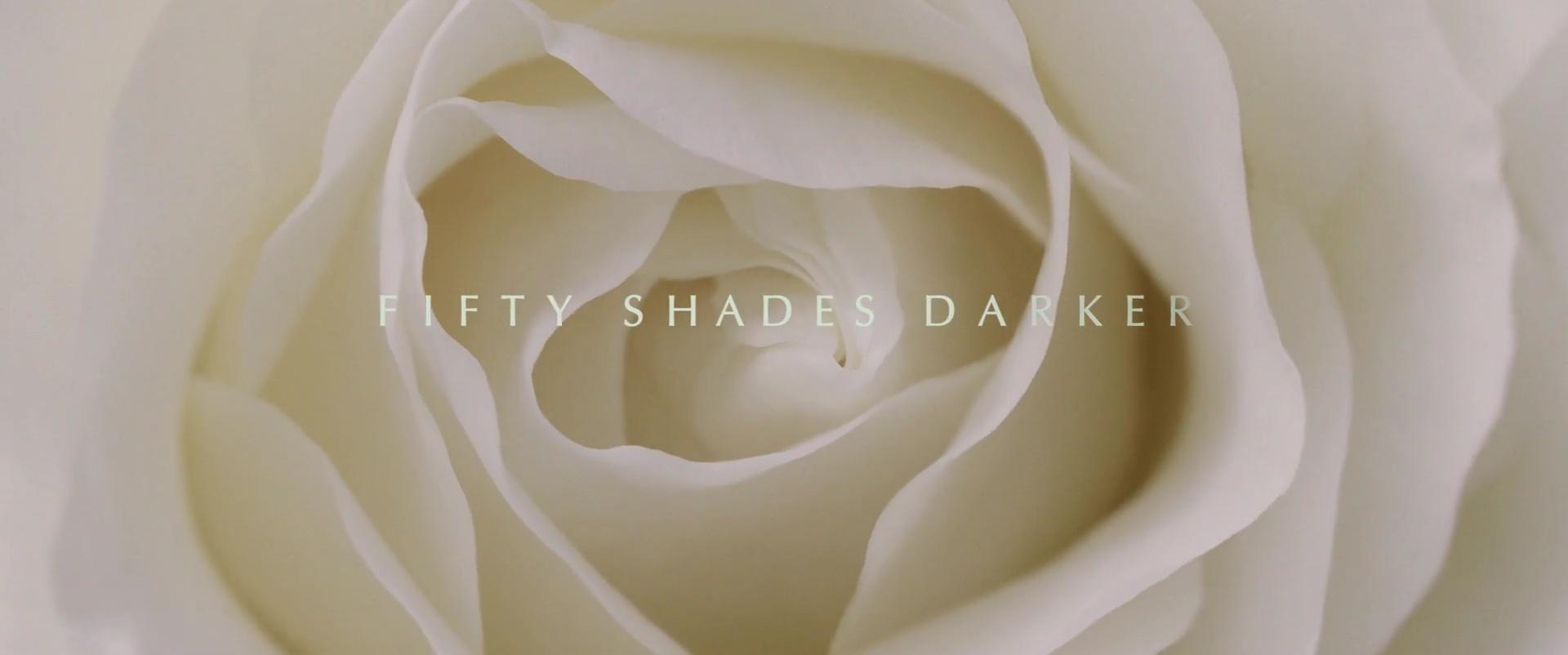 CINQUANTE NUANCES PLUS SOMBRES (Fifty Shades Darker) de James Foley (2017)