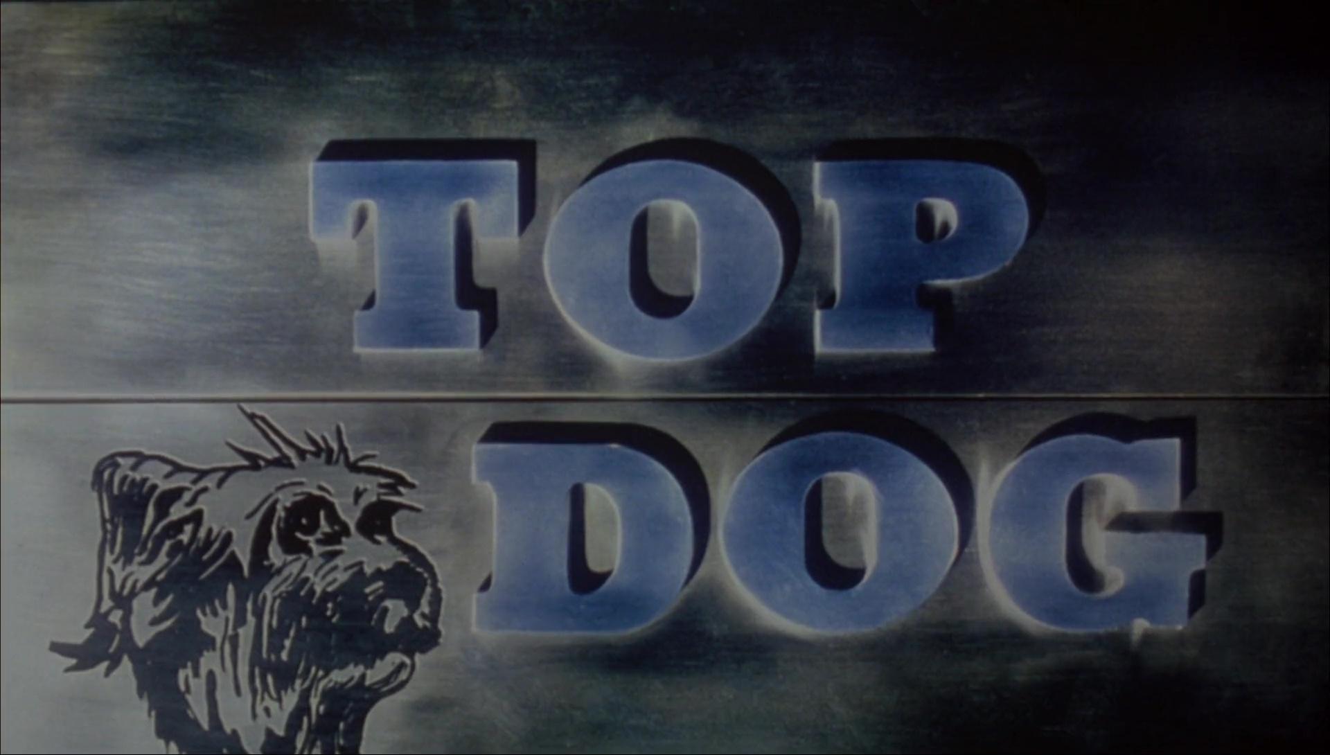 TOP DOG de Aaron Norris (1995)