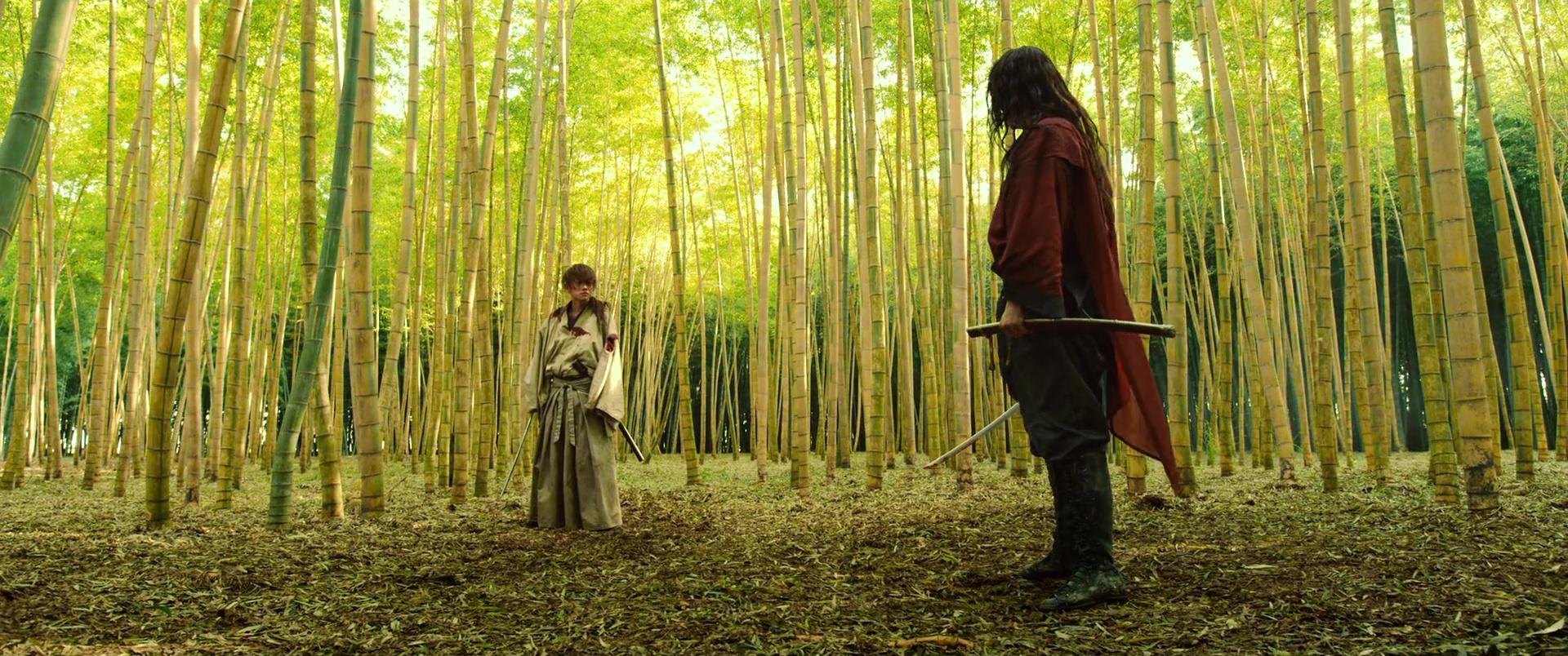 KENSHIN : LA FIN DE LA LÉGENDE (るろうに剣心 伝説の最期編) de Ôtomo Keishi (2014)