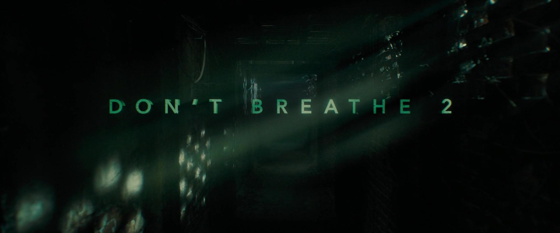 DON'T BREATHE 2 de Rodo Sayagues (2021)