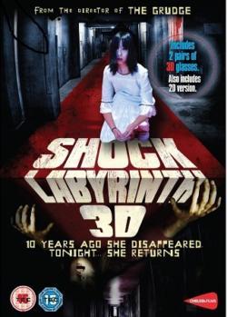 2010 Shock Labyrinth